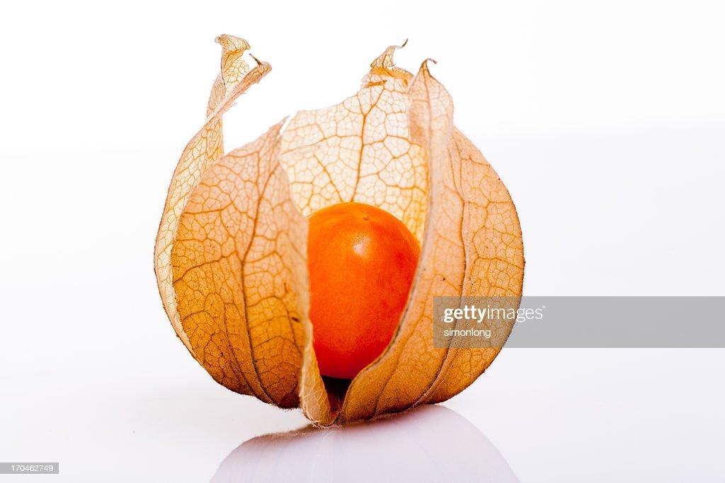 The gooseberry
