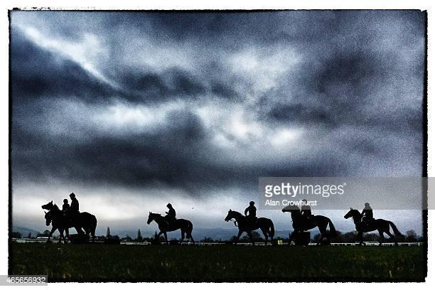 The Gordon Elliott string on the gallops at Cheltenham racecourse on March 09 2015 in Cheltenham England