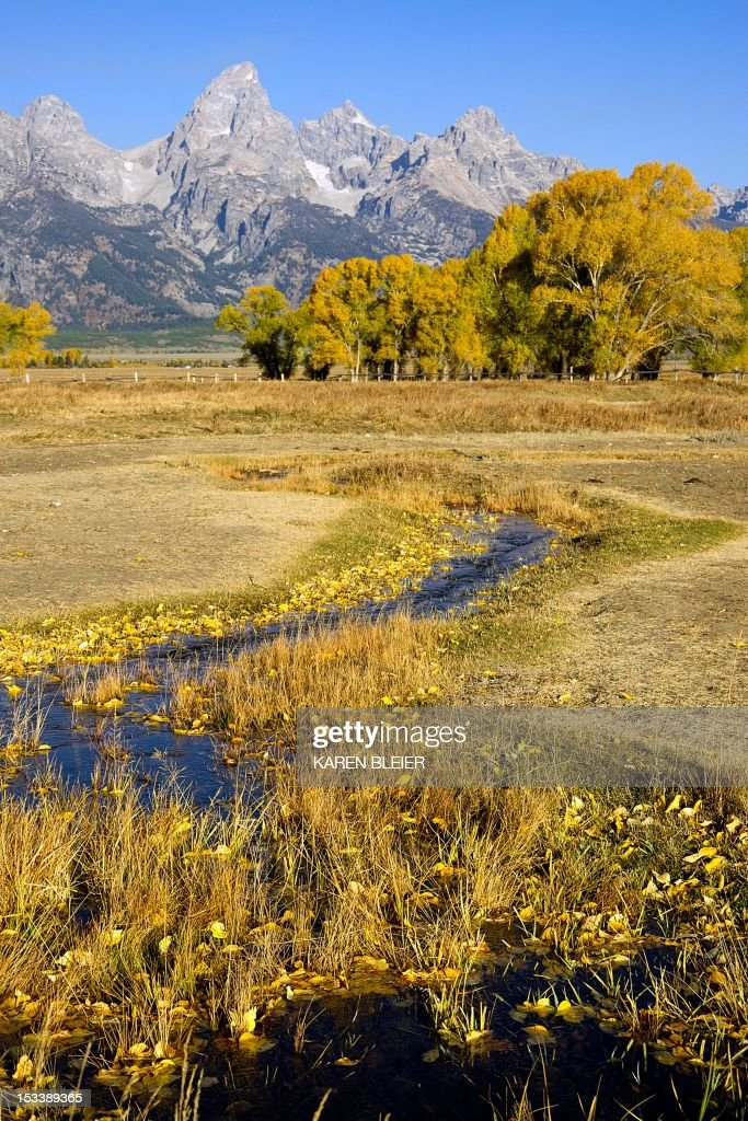 The Grand Tetons are seen in the distance October 4 2012 in the Grand Teton National Park in northwestern Wyoming Approximately 310000 acres in size...