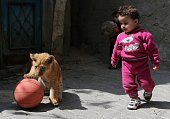 The grandchildren of Palestinian man Saad alJamal play with two lion cubs outside their family house in the Rafah refugee camp in the southern Gaza...