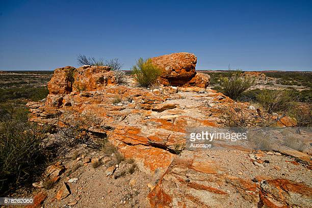 The Granites escarpment formations created by erosion of the soft white granite from beneath a hard red brown iron cemented capping The area is a...