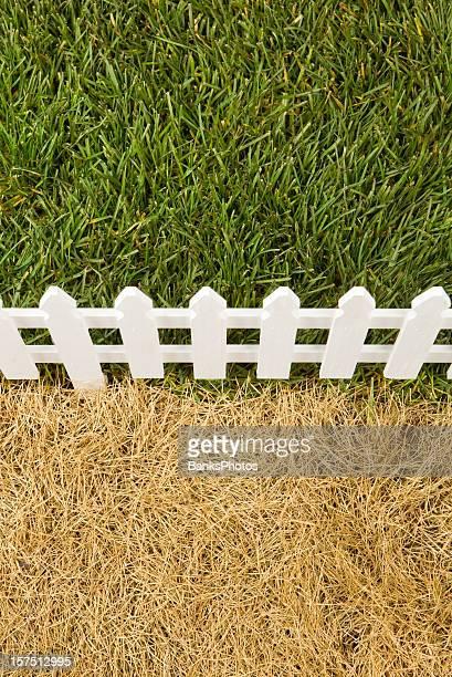 The Grass is grüner auf der anderen Seite des Nachbarn
