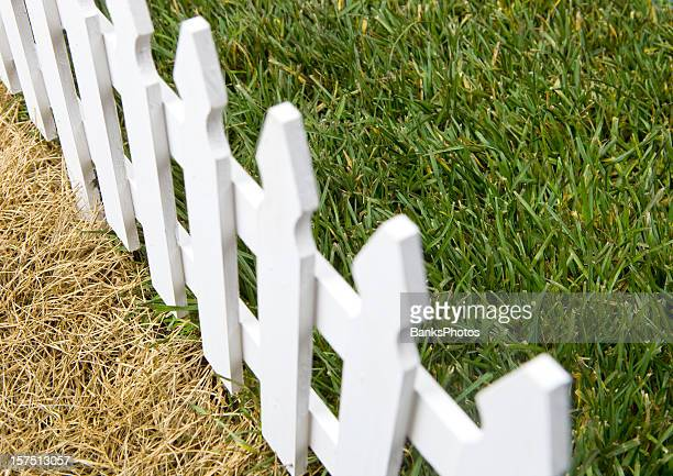 The Grass is Greener on Other Side of Fence