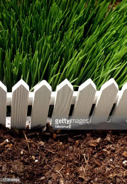 The Grass is Greener-englische Redewendung