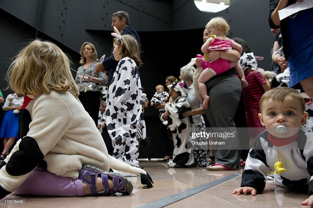 The grassroots movement Momsrising.org along with Sen. Joe Manchin, D-WVA., staged an event in the Hart Senate Office Building on July 9, 2013 with children dressed in cow suits with the message, 'Dont Be Cowed by the Gun Lobby.'