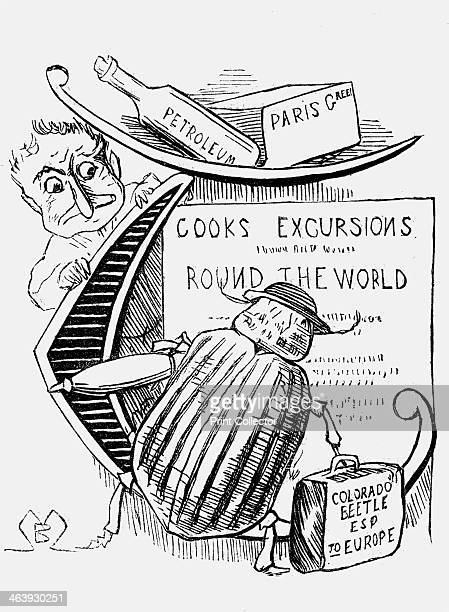 'The Great Beetle Panic' 1877 The Colorado Beetle was a constant threat in the Victorian period and this cartoon depicts one beetle planning an...