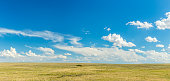 Prairies are ecosystems considered part of the temperate grasslands, savannas, and shrublands biome by ecologists, based on similar temperate climates, moderate rainfall, and a composition of grasses,