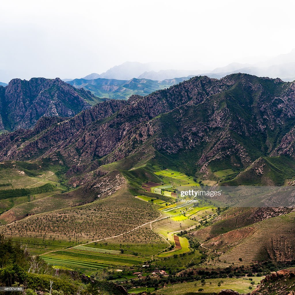 the green farm land