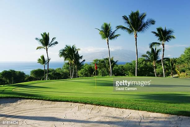 The green on the par 3 8th hole on the Wailea Golf Club Gold Course in Wailea on the island of Maui Hawaii USA