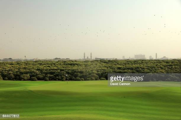 The green on the par 5 11th hole at the Al Zoorah Golf Club on January 29 2017 in Ajman United Arab Emirates