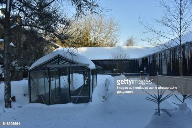 The greenhouse on bluish snow