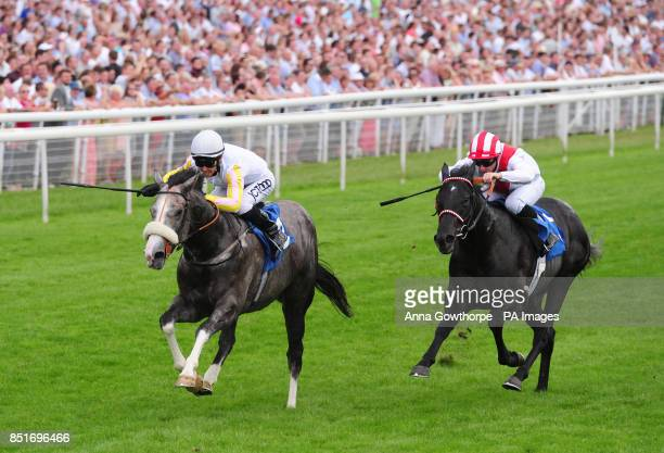 The Grey Gatsby ridden by Graham Lee beats Brazos ridden by Brett Doyle to win the John Smith's Median Auction Stakes during the 2013 John Smith's...