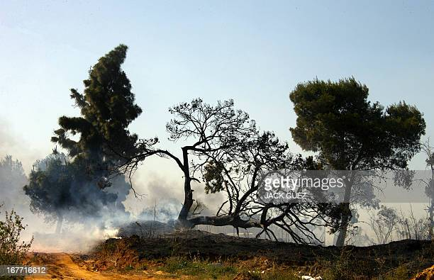 The ground smolders following a brush fire caused by the combination of hot temperature dry weather and the Jewish Lag Baom holiday in which revelers...