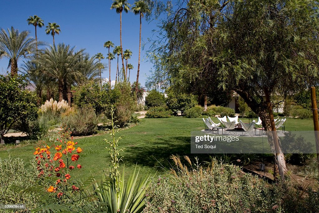 The grounds of the parker hotel in palm springs formerly for Jonathan adler hotel palm springs