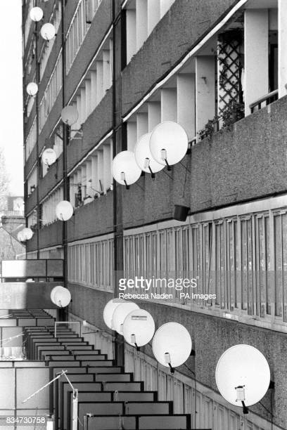 The growing popularity of satellite television is demonstrated by the number of receiving dishes on the side of this south London council estate