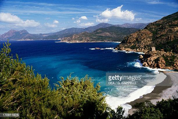 The Gulf of Porto with the ruins of a Genoese tower Regional Natural Park of Corsica Corsica France