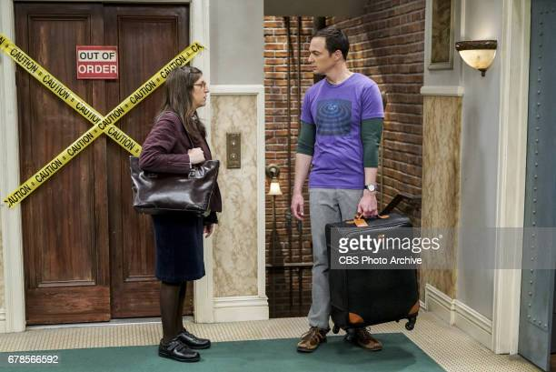'The Gyroscopic Collapse' Pictured Bernadette and Sheldon Cooper After Leonard Sheldon and Wolowitz celebrate the completion of the top secret air...