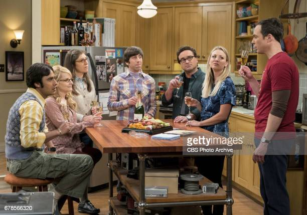 'The Gyroscopic Collapse' Pictured Rajesh Koothrappali Bernadette Amy Farrah Fowler Howard Wolowitz Leonard Hofstadter Penny and Sheldon Cooper After...