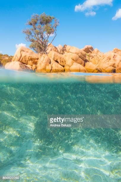 The half underwater view of the turquoise water in Capriccioli beach, Arzachena Costa Smeralda, Olbia-Tempio province, Sardinia district, Italy