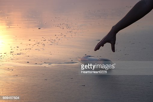 The hand of a woman is picking up a plastic bottle : Stock Photo