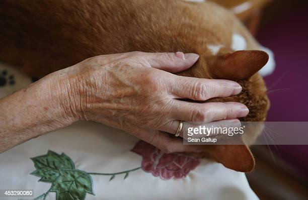 The hands of Eleanora Mende who lost the use of her legs and requires care stroke the fur of Mogli during the cat's weekly visit at the Lutherstift...