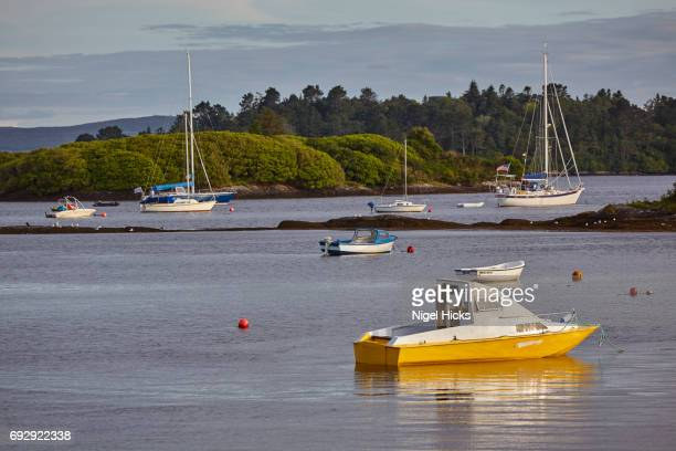 The harbour at Glengarriff, County Cork, Ireland.