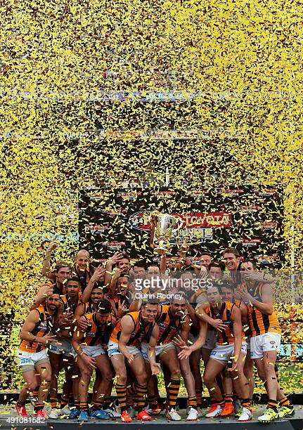 The Hawks celebrate winning the 2015 AFL Grand Final match between the Hawthorn Hawks and the West Coast Eagles at Melbourne Cricket Ground on...
