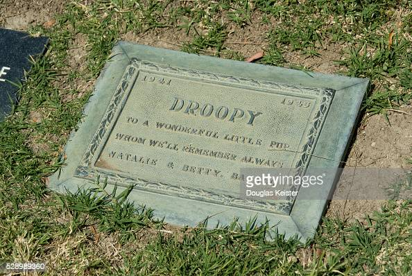 USA - Gravesite of Lauren Bacall's Dog Droopy Pictures ... Lauren Bacall Grave