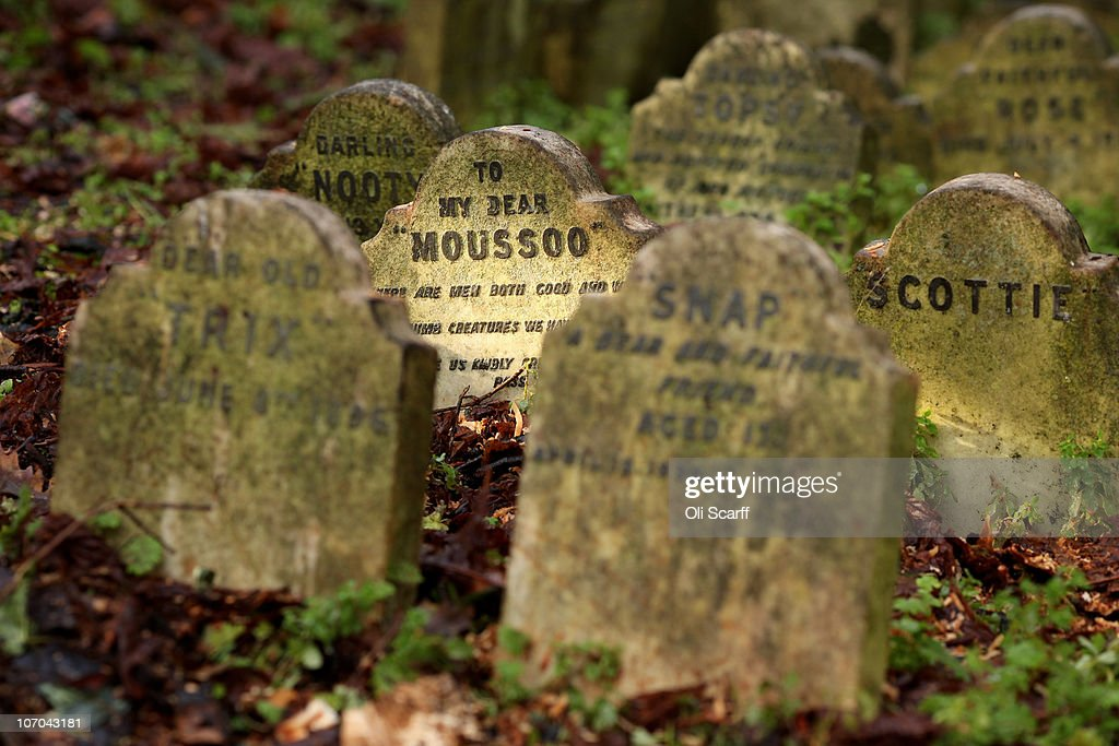 The Headstone For Deceased Pet Moussoo Stands Amongst Gravestones In Hyde Park