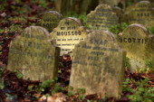 The headstone for the deceased pet 'Moussoo' stands amongst gravestones in the Hyde Park pet cemetery on November 18 2010 in London England The...