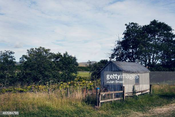 The henhouse Photographed for the New York Times Style Magazine on August 8 2013 in Kelso Scotland