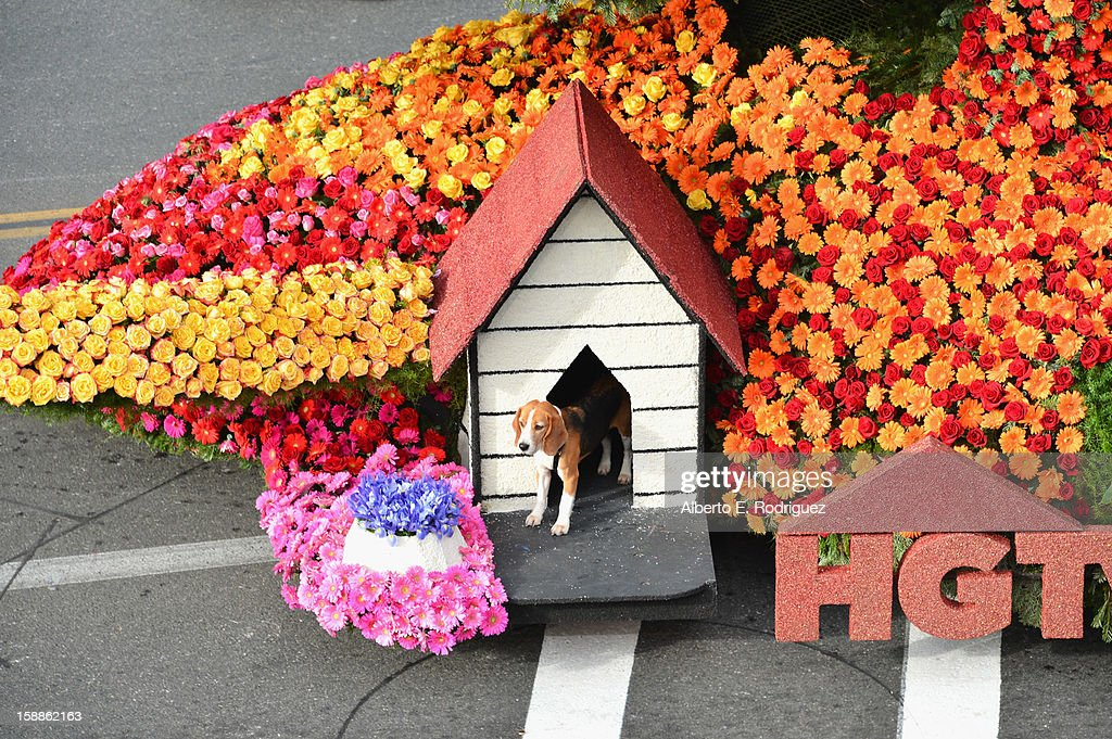 The HGTV float participates in the 124th Tournamernt of Roses Parade on January 1, 2013 in Pasadena, California.