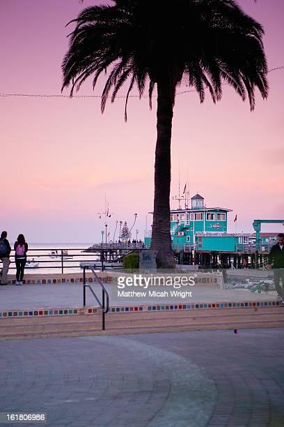 The historical landmark Green Pier in Avalon.