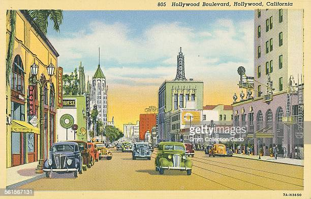 The Hollywood Boulevard in Hollywood with traffic and tall buildings Hollywood California 1945