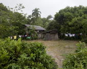 The home of a coca farmer's family