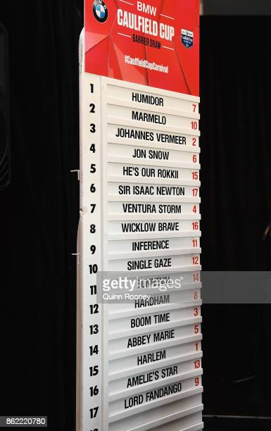 The horses and their barriers are displayed during the Caulfield Cup Barrier Draw at Caulfield Racecourse on October 17 2017 in Melbourne Australia