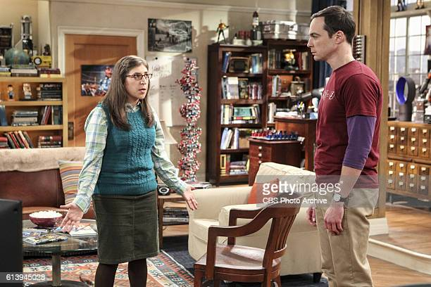 'The Hot Tub Contamination' Pictured Amy Farrah Fowler and Sheldon Cooper Leonard and Penny must separate a quarreling Sheldon and Amy when their...