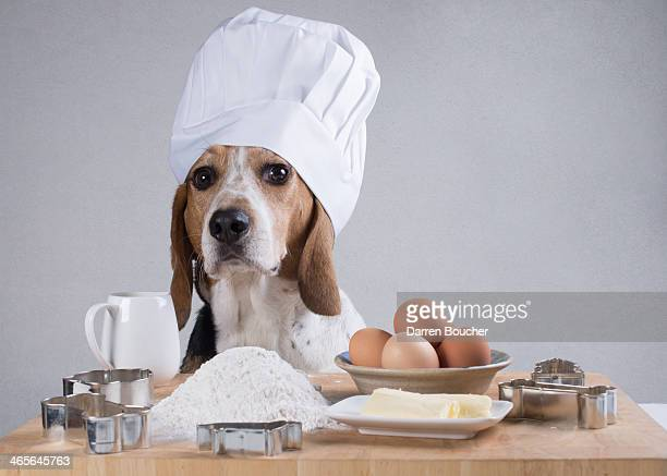 The Hound Baker