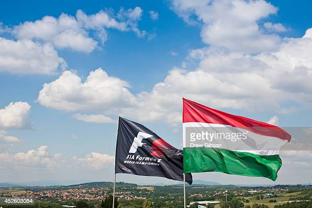 The Hungarian national flag flaps in the wind next to the FIA flag during previews ahead of the Hungarian Formula One Grand Prix at Hungaroring on...