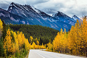"""The concept of active and automobile tourism. The astonishing nature of the Rockies of Canada. The road 93 """"Icefields Parkway"""" passes among the snow-capped mountains"""