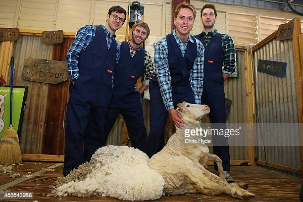 The Inbetweeners cast Simon Bird James Buckley Joe Thomas and Blake Harrison learn to sheep sheer at RNA Show Grounds on August 13 2014 in Brisbane...