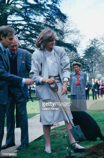 The Infanta Cristina daughter of Spanish Kings Juan Carlos and Sofia plant a tree in the Castle of the Dukes of Wellington First April 1986 London...