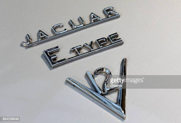 The Jaguar EType logo is seen during a press preview before a mass auction of vintage vehicles organised by Bonhams auction house at the Grand Palais...