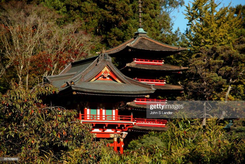The Japanese Tea Garden in San Francisco California is a historical Japanesestyle garden originally built as the Japanese Village for the 1894...