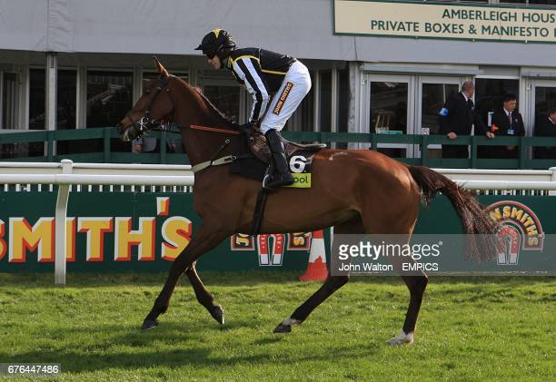 The Jazz Musican ridden by jockey Tom Scudamore prior to the Totepool Manifeseto Novices' Chase