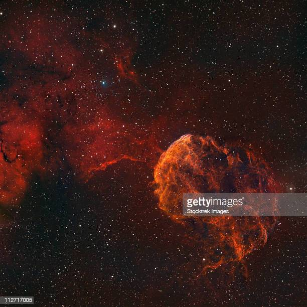 The Jellyfish Nebula, also known as IC 443 and Sharpless 248.