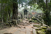 The Jungle Slowly Reclaiming Angkorian Temples In Cambodia