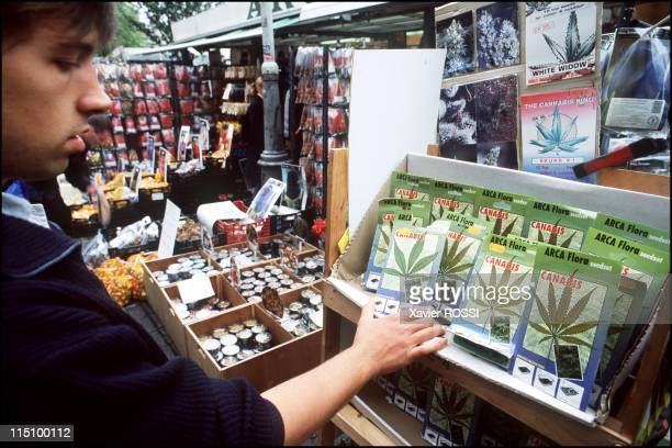 The Kings of Cannabusiness in October 2000 On the Amsterdam Flower Market Cannabis seeds legally are on sale
