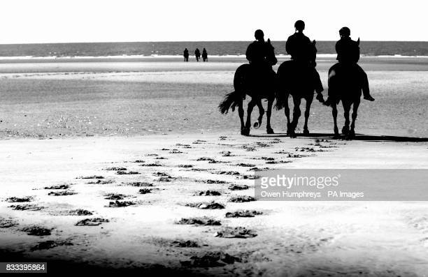 The Kings Troop Royal Horse Artillery enjoy a gallop along St Ann's beach today during a wellearned break from Royal engagements in London on a...