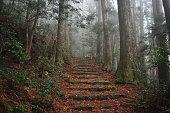 Kumano, Japan at Matsumoto Pass. The pass is part of the Kumano Kodo, a series of ancient pilgrimage routes.